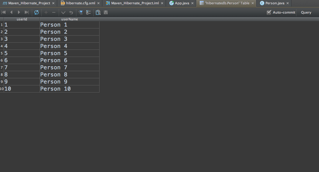 IntelliJ_photo6
